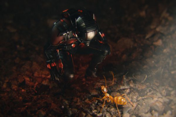 Marvel's Ant-Man Scott Lang/Ant-Man (Paul Rudd) Photo Credit: Film Frame © Marvel 2015