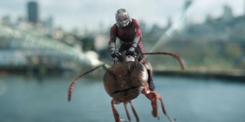 Верхом на муравье навстречу ветру*