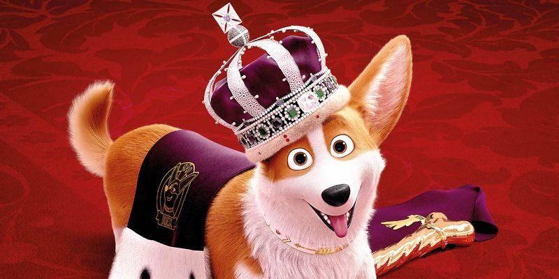 «Королевский корги»