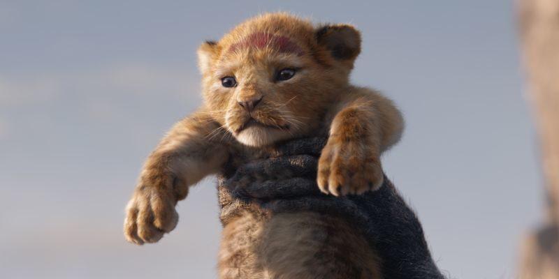 «Король Лев»: шедевр кино и жизни