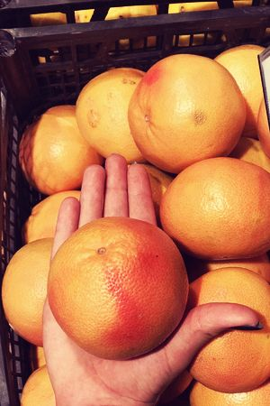 Grapefruits 2