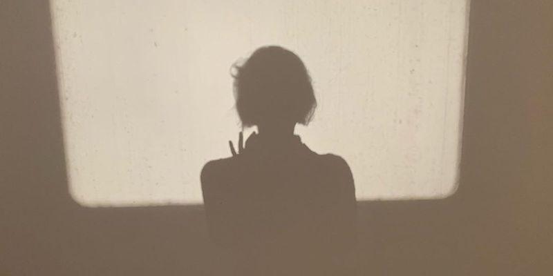 «Потерянная дочь»: от романа до фильма